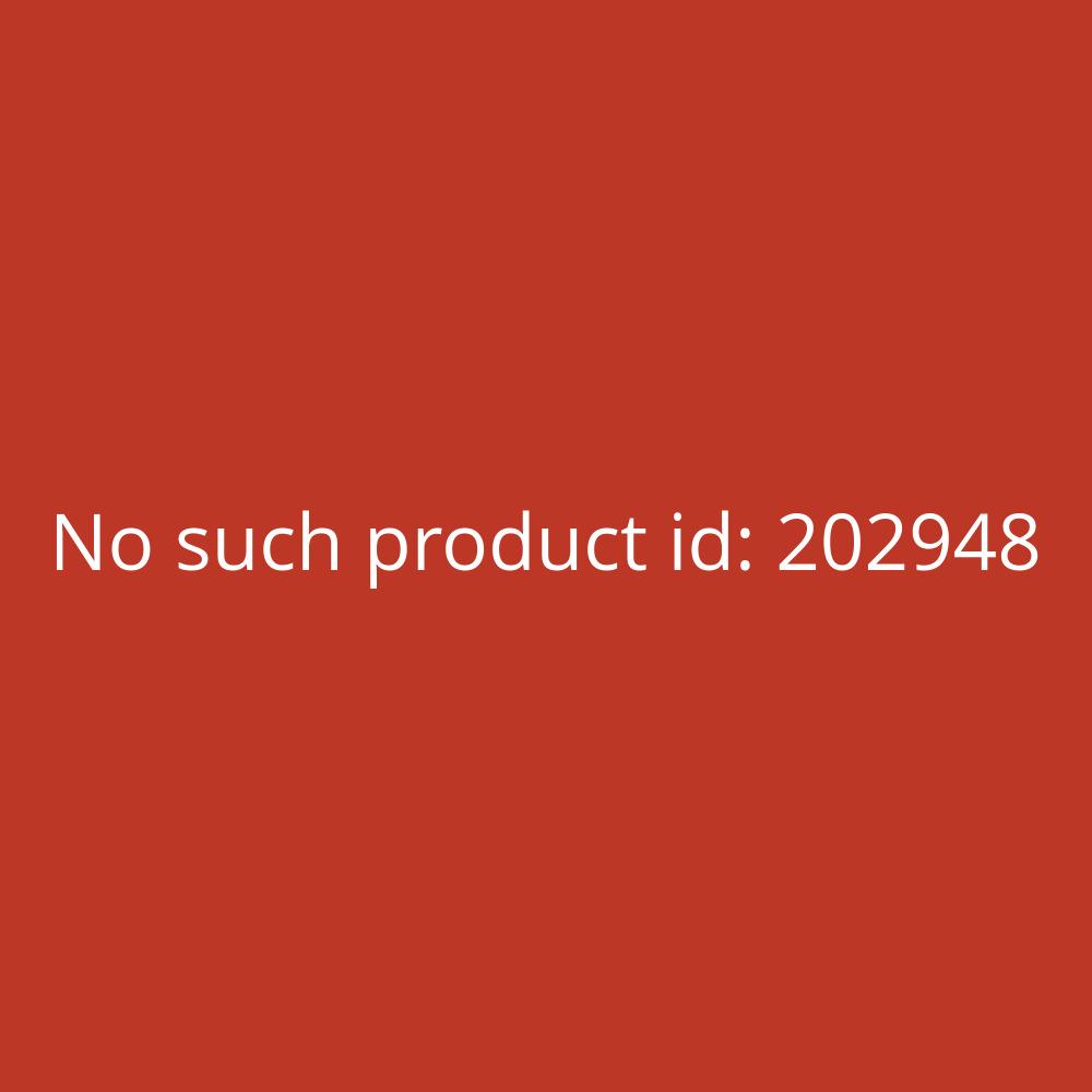 Franken Ersatzfolie für Kundenstopper transparent A1 UV-Filter 2 Stück