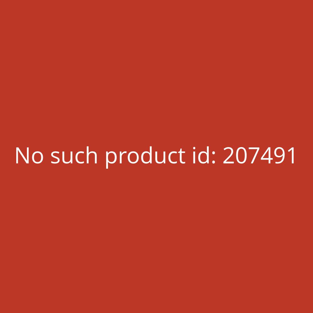 Bad Reichenhaller Jodsalz 500 g Dose weiß