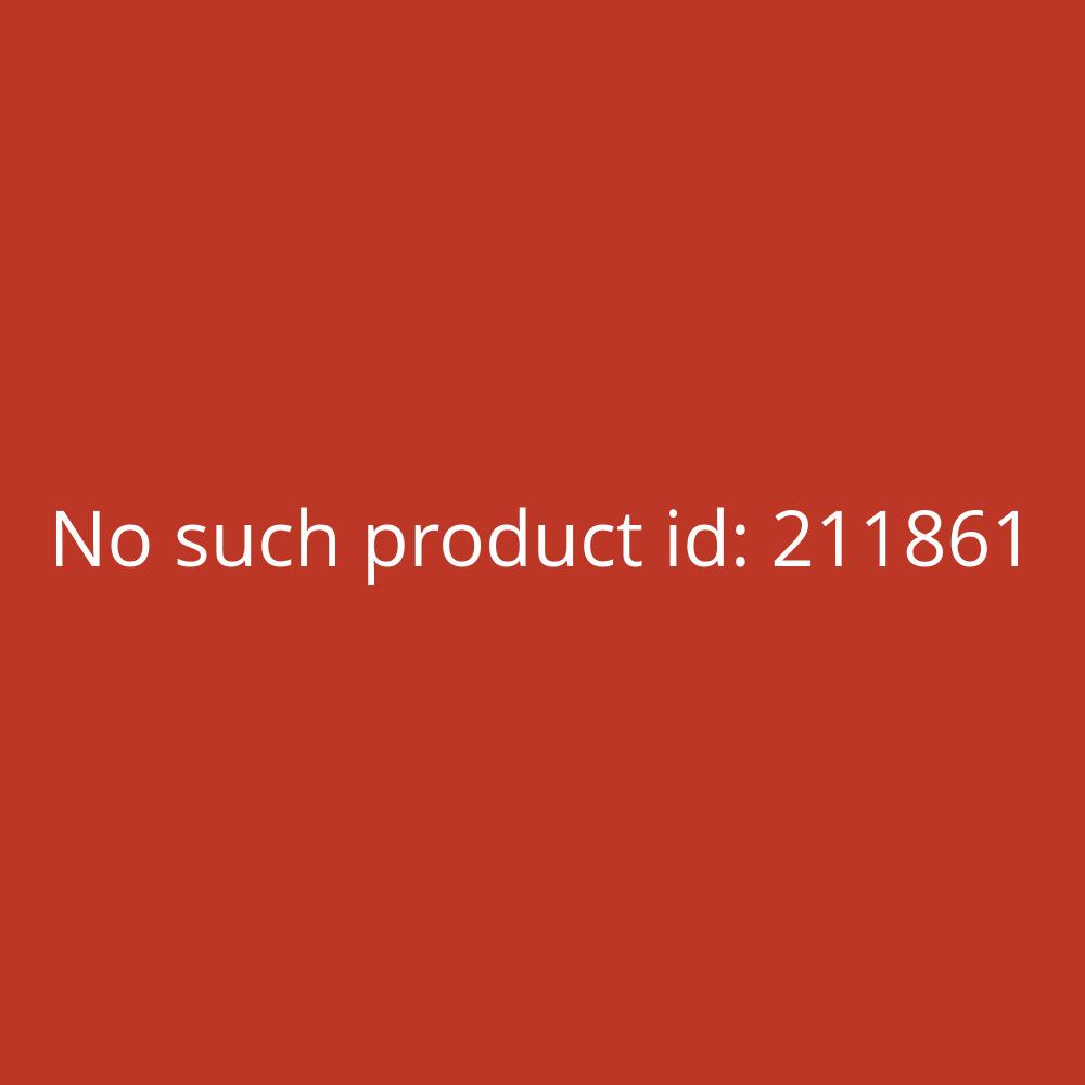 Leitz Register PP Fenstertabe blanko grau A4 15-teilig volle Höhe