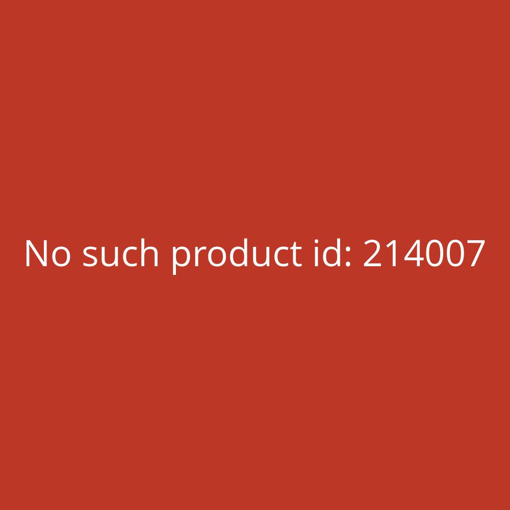 Mappei Aktionsmappen mit hellblauem Reiter klar A4 0,4mm PP-Folie