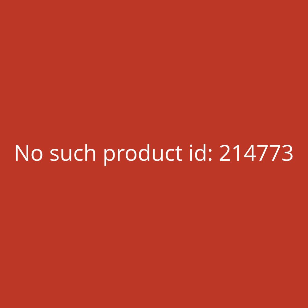 Staples Register PP Fenstertabe blanko grau A4 10-teilig volle Höhe