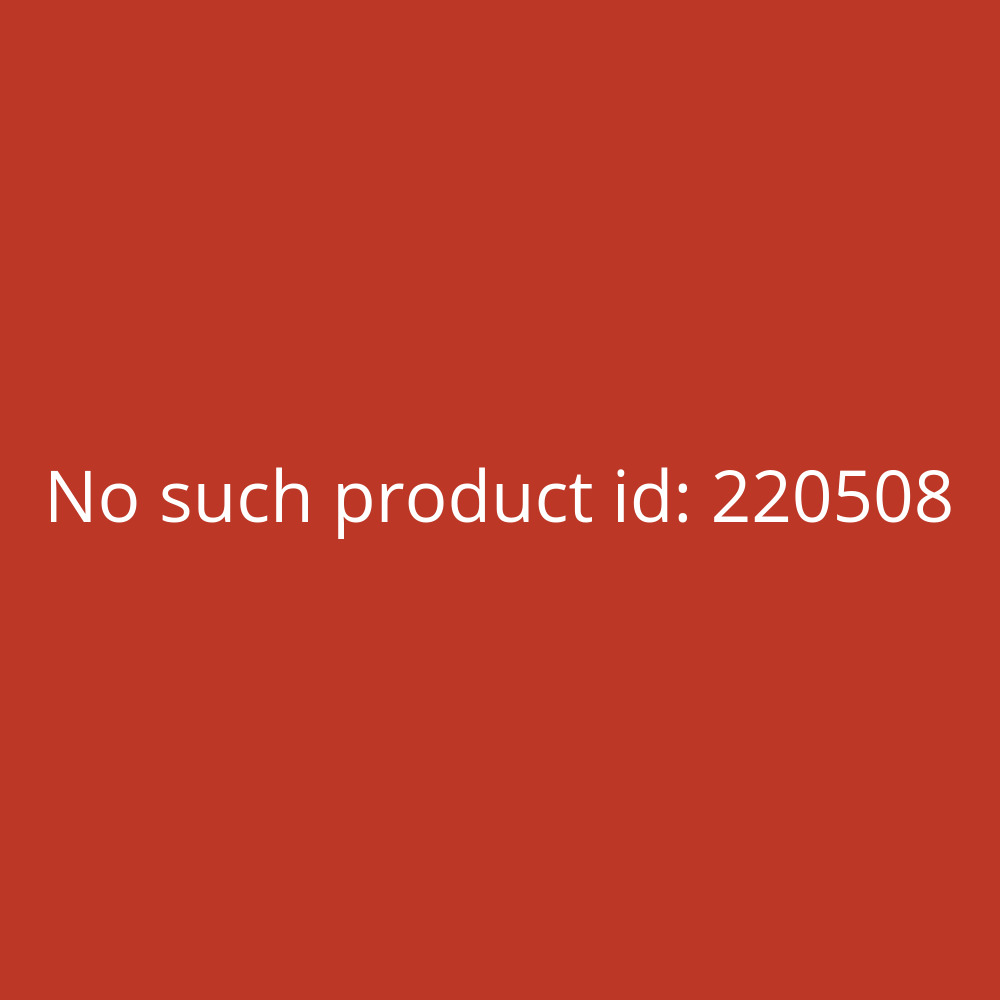 Bene Ösenhefter 81322 250 g orange A4