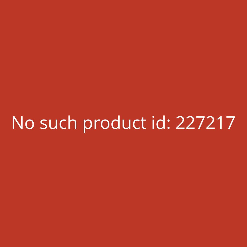 Olympus Digital Voice Recorder WS-852 grau 4GB MP3