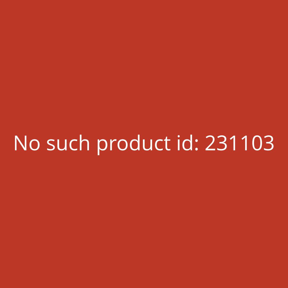 WC- und Sanitärreiniger Roland 10L
