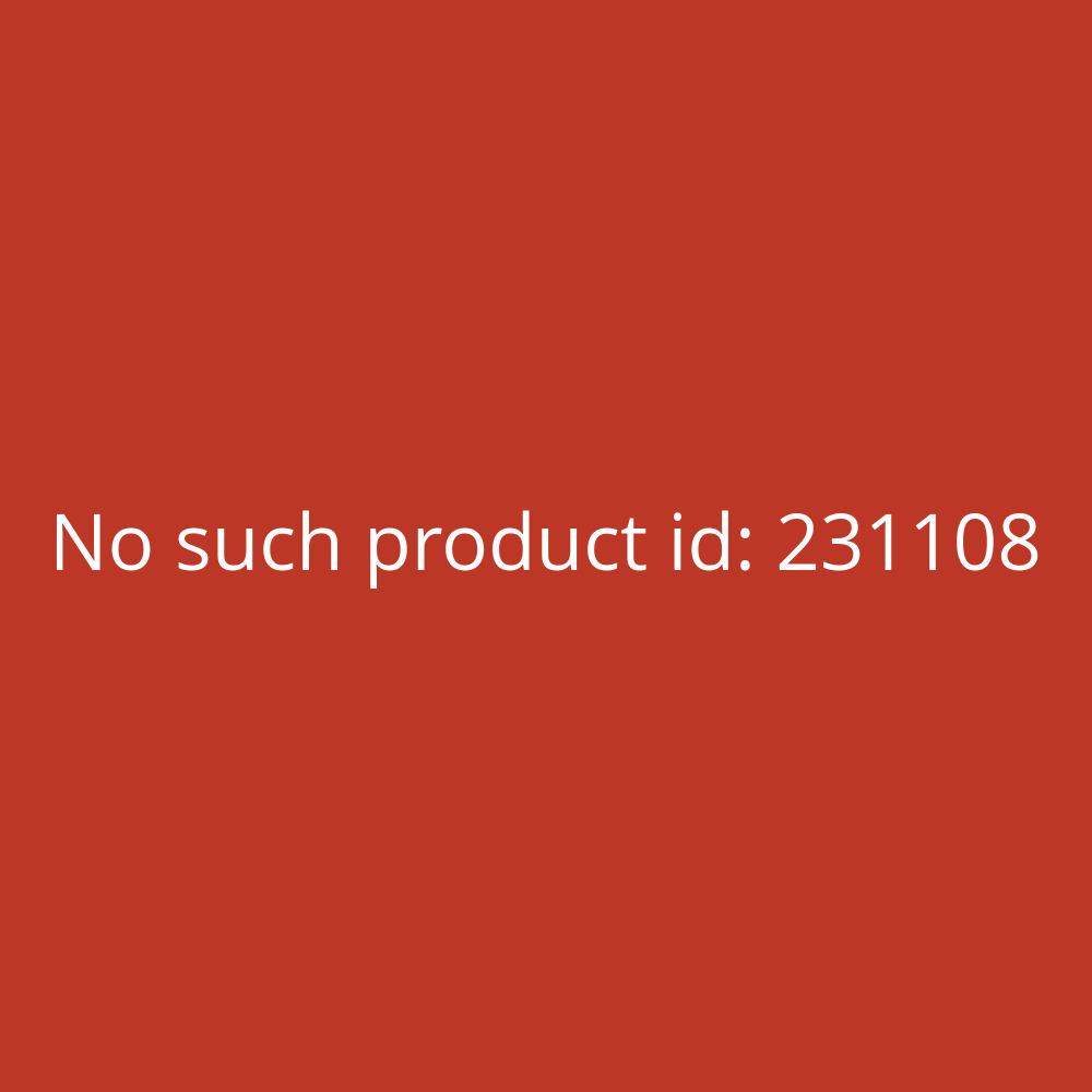 Roland Parkett- und Laminatreiniger 10 L Wischpflege