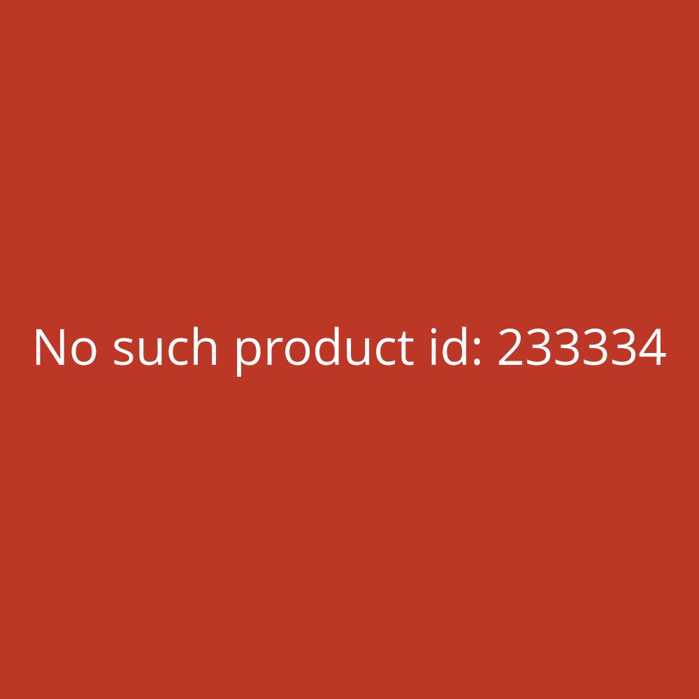 Söhngen Anleitung Erste Hilfe Plakat BGI510-1