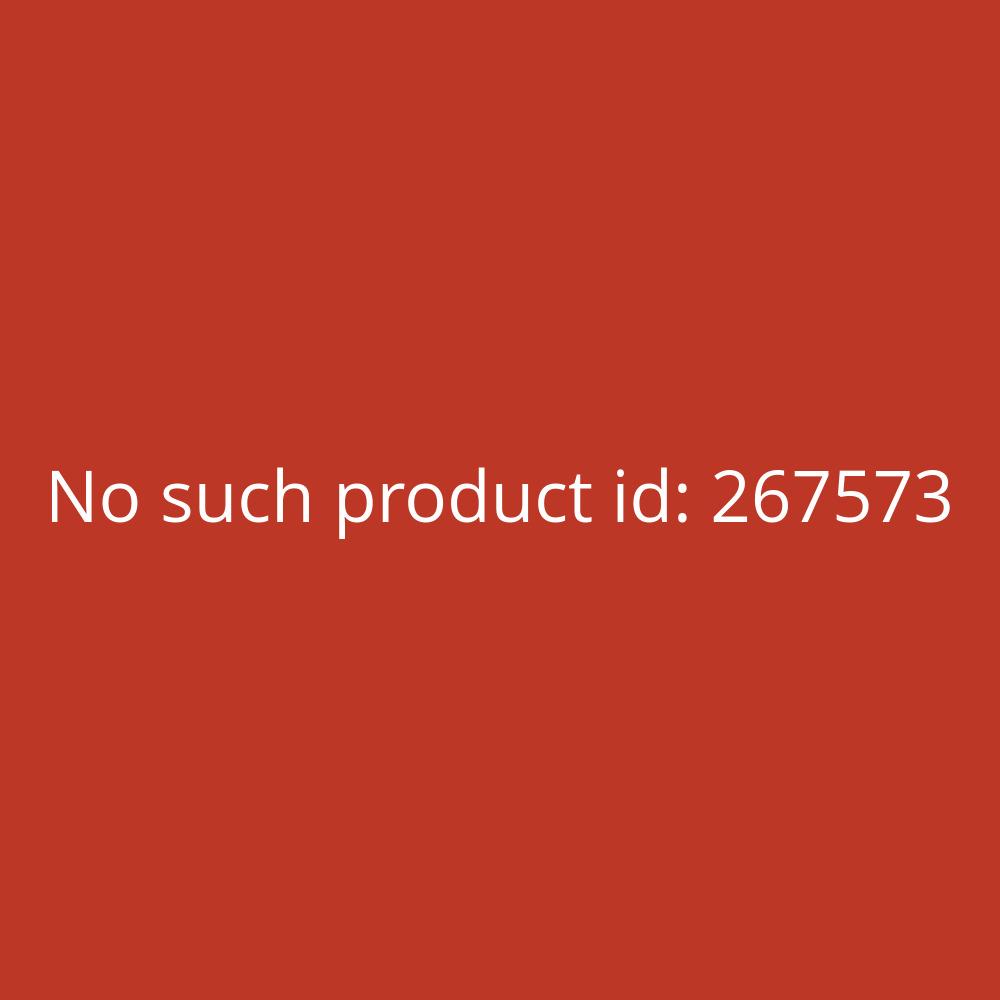 Kühlbox 45L A++ 84kWh/Jahr weiß 50x48x44,5cm Severin