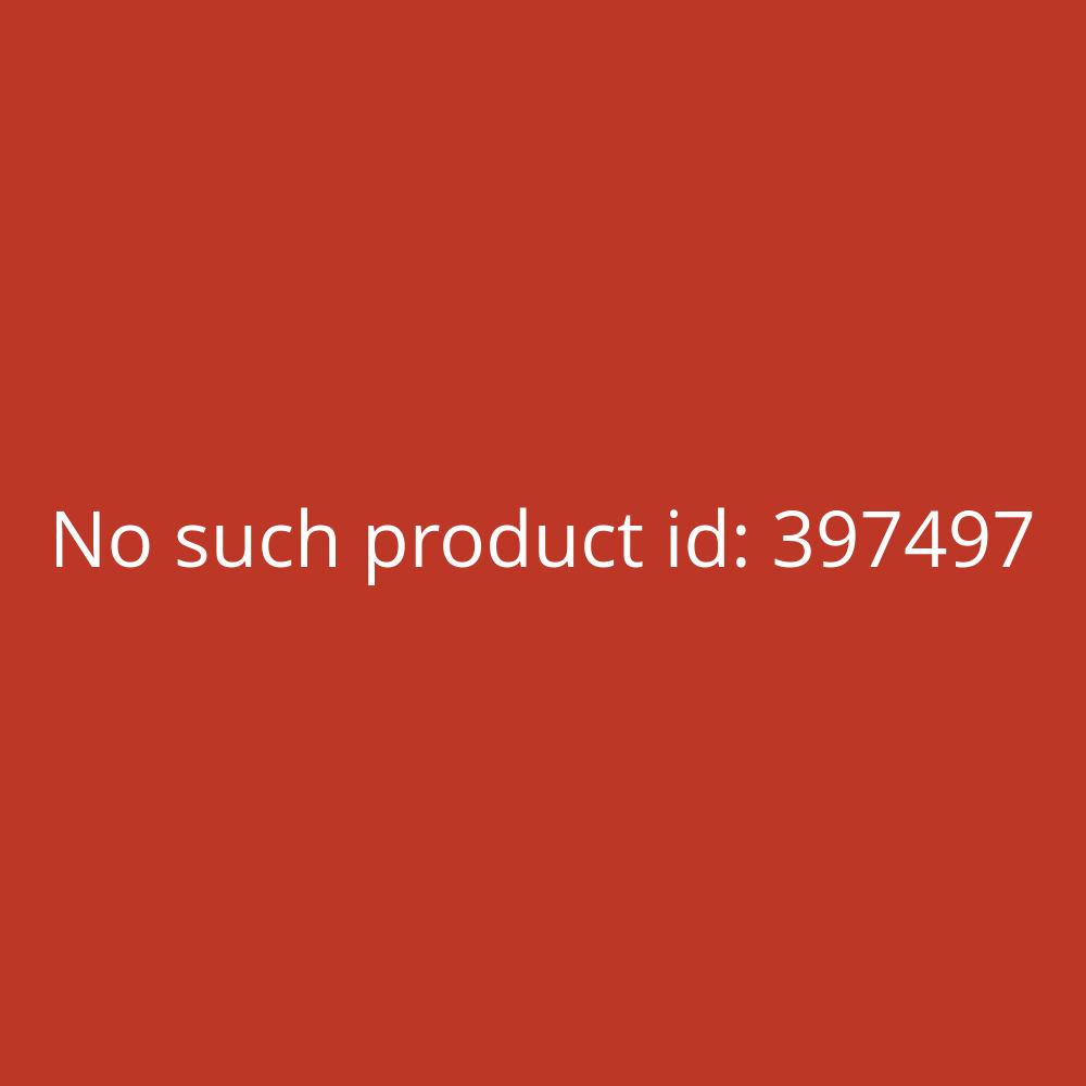Canon Tintenstrahldrucker PIXMA G1501 A4 Farbe