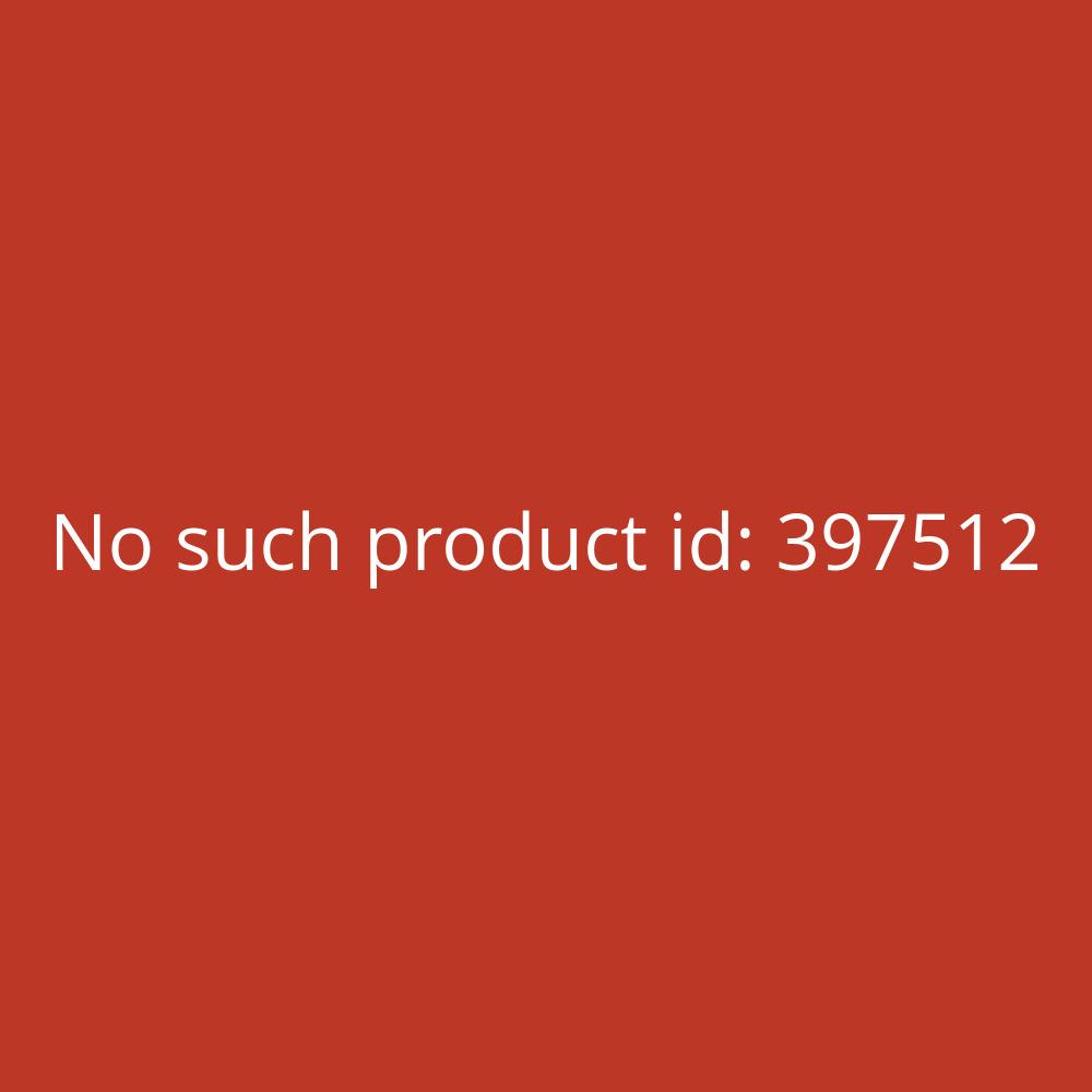 Canon Tintenstrahldrucker PIXMA GM2050 A4 schwarz